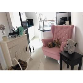 Fotel uszak w pięknym jasno różowym kolorze tkaniny i brylantami